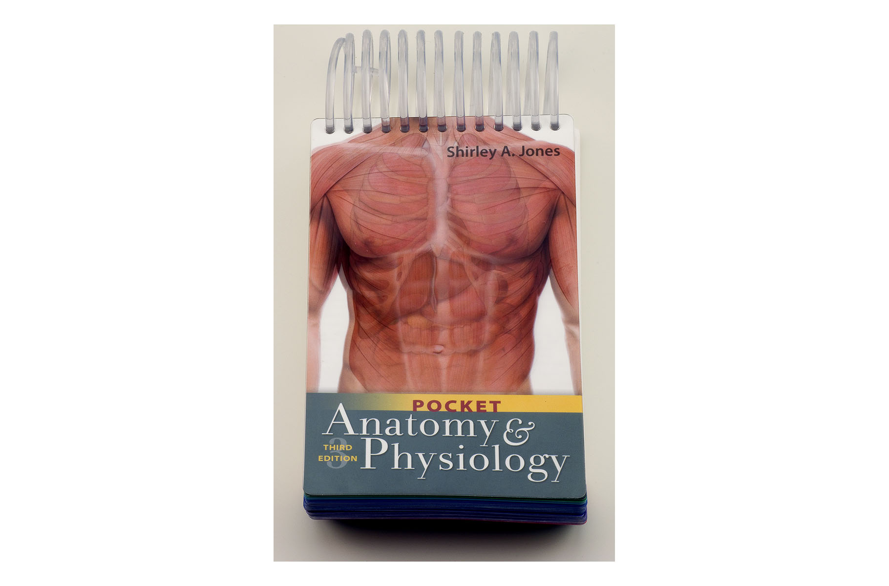 Anatomy & Physiology Pocket book - BioGeometry Europe